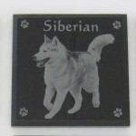 photo engraved marble coaster